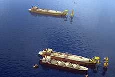 Delfin LNG application to be processed