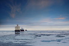 SCF results highlight LNG activity