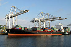 MOL expands containership fleet