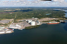 EIA on pipeline and proposed LNG terminal