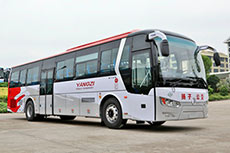 Nanjing adds Golden Dragon LNG buses to public transport