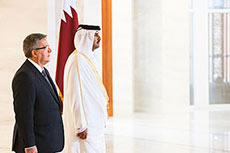 Poland and Qatar discuss LNG