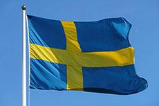 Enagas, Fluxys acquire Swedegas
